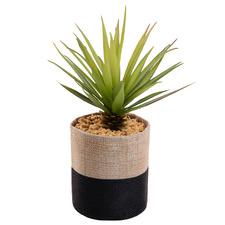 21cm Potted Faux Sword Grass Succulent