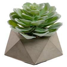 14cm Odina Potted Faux Echeveria Succulent