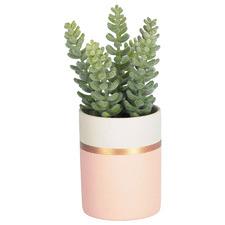 19cm Faux Sedum Lucidum Plant with Ceramic Pot