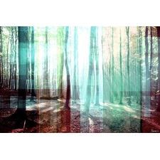 Tree Rays Art Print on Canvas