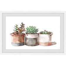 Cactus Cans Framed Printed Wall Art