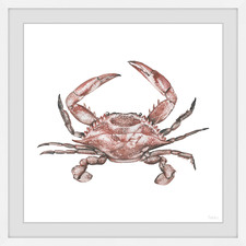 Red Crab Framed Printed Wall Art