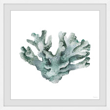 Faded Coral Framed Printed Wall Art