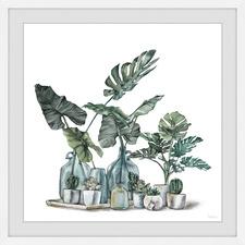 Cactus & Palms Framed Printed Wall Art