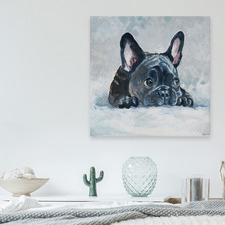 Afraid Pug Stretched Canvas Wall Art
