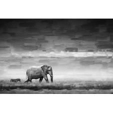 Elephant Art Print on Canvas