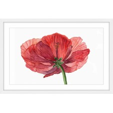 Hibiscus Flower Framed Painting Print