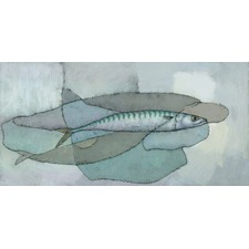 Cornish Mackerel Canvas Wall Art