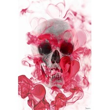 Skull 2 Canvas Wall Art