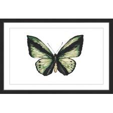 Hunter Green Butterfly Framed Print