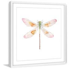 Translucent Dragonfly Framed Print