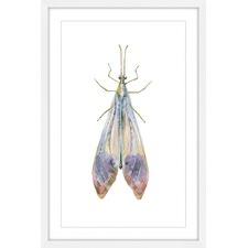 Slender Purple Beauty Framed Print