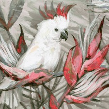 White Cockatoo III Canvas Wall Art