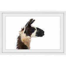 Llama Profile II Framed Print