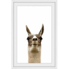 Llama Face V Framed Print
