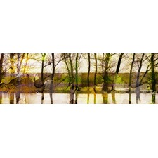 Lake Trees Canvas Wall Art