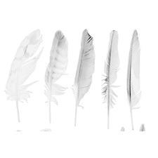 Dusky Feathers Art Print on Canvas
