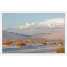 Desert Day Framed Print
