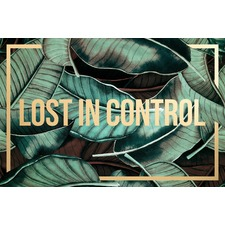 Lost in Control Canvas Wall Art