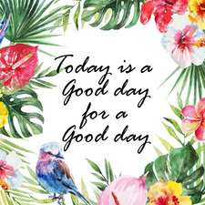 Today is a Good Day III Stretched Canvas Wall Art