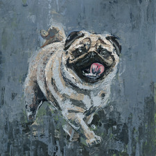 Walking Pug Stretched Canvas Wall Art