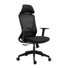 Ayse Ergonomic Office Chair