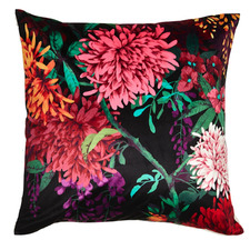 Luxotic Cushions