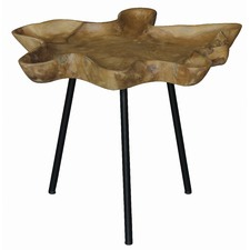 TRAY Shape Side Table with Iron Leg