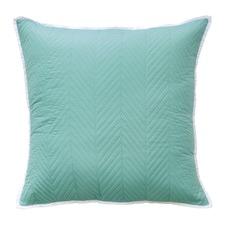 Vivid Coordinate Aqua Cushion