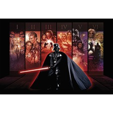 Classic Star Wars - Feel The Force Full Wall Mural