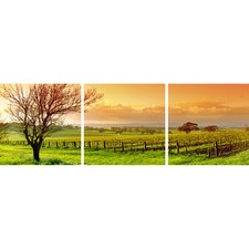 Vineyard Landscape Triptych (Set of 3)