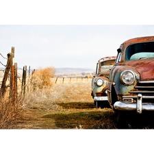 Rusty Cars Canvas Print