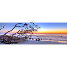 Driftwood Sunrise Canvas Print