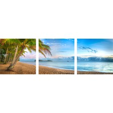 Palm Cove Dawn Triptych (Set of 3)