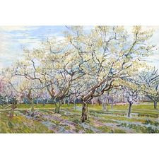 The White Orchard Canvas by Van Gogh