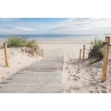 Beach Path Canvas