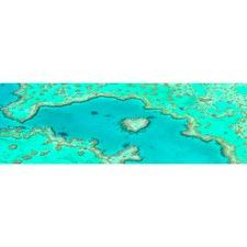 Heart Reef Canvas