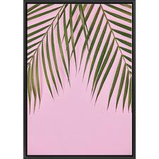 Golden Cane Palm II Print