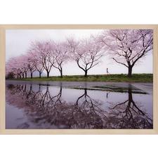 Rain of Spring Wall Art