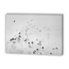 Cocora Valley Canvas Wall Art