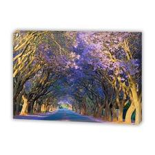 Jacaranda Alley Canvas Print