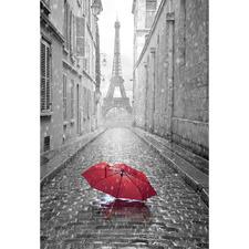 Lost Umbrella in Paris Canvas