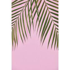 Golden Cane Palm II Canvas