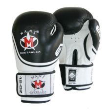 Leather EVO Boxing Gloves