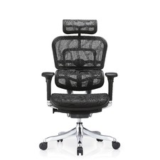 ​Ergohuman Plus Deluxe Mesh Office Chair (V1)