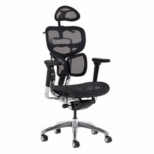 Ergonomic 2020 Posture Management Office Chair