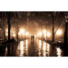 Midnight Romance Canvas Print