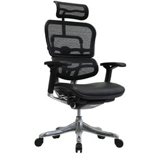 Ergohuman Leather & Mesh V2 Plus Deluxe Office Chair