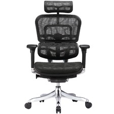 Ergohuman V2 Plus Deluxe Mesh Office Chair