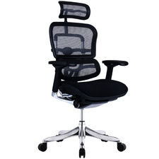 Ergohuman Plus Elite V2 Mesh & Upholstered Office Chair